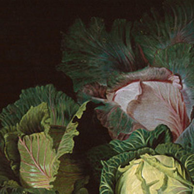 180714 – Cabbage Revolutionary - London